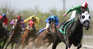 Equestrian Betting History