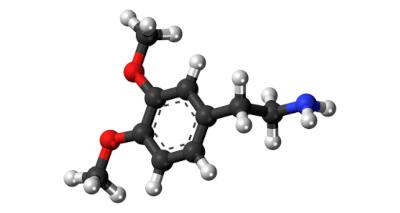 Gambling and Dopamine